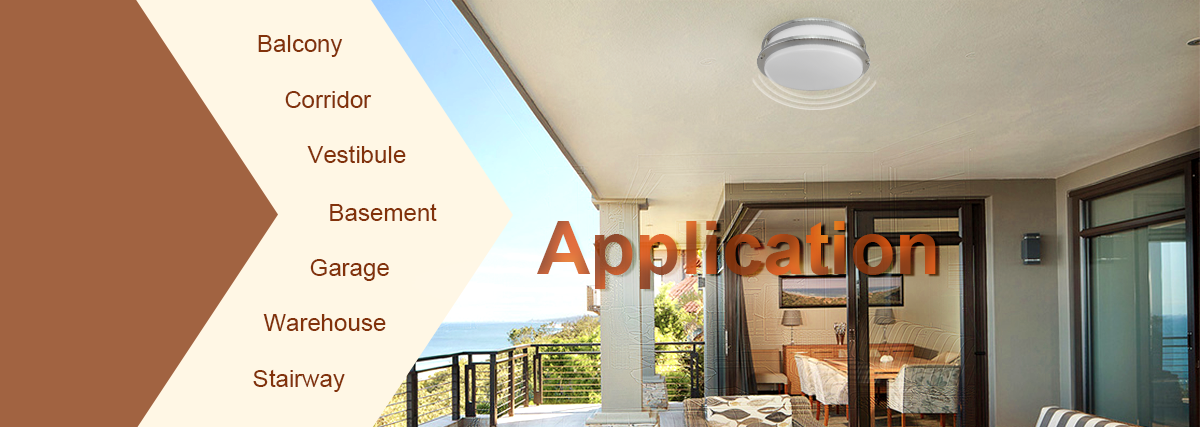 Sensor Led Flush mount Ceiling Light